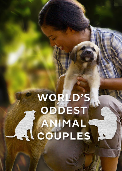 World's Oddest Animal Couples US