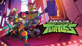 Rise of the Teenage Mutant Ninja Turtles (2018)