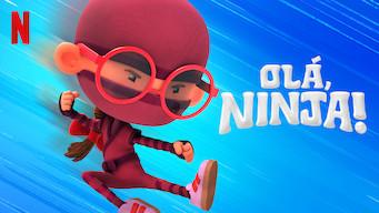 Olá, Ninja! (2019)