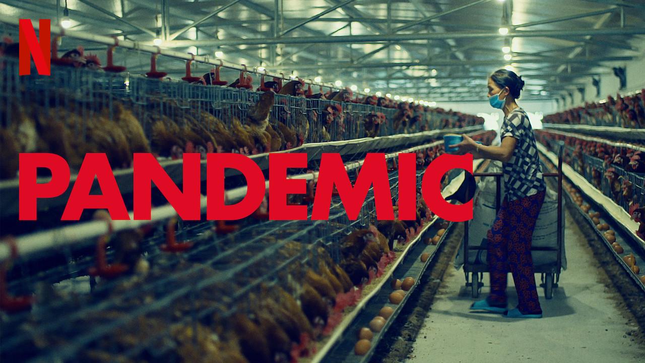 Pandemie Netflix