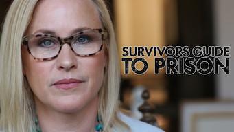 Survivors Guide to Prison (2017)