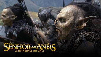 O Senhor dos Anéis: A Irmandade do Anel (2001)
