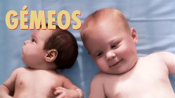 Irmãos Gêmeos (1988)