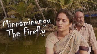 Minnaminugu the FireFly (2017)