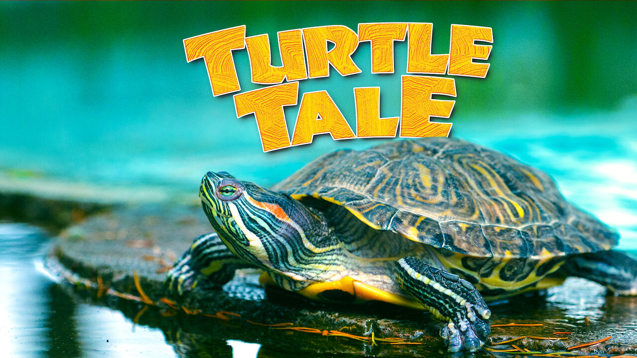 Turtle Tale on Netflix Canada