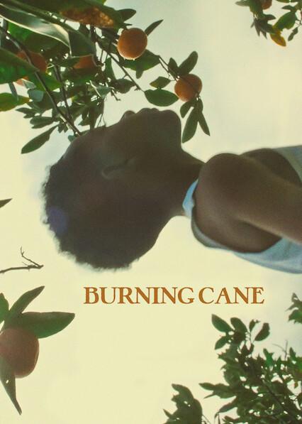 Burning Cane on Netflix Canada